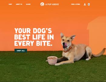 A Pup Above Cashback