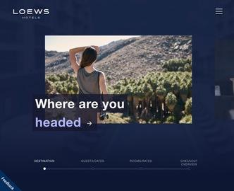 Loews Hotels & Resort 返利